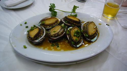 shellfish-allergy-univalve-molluscs